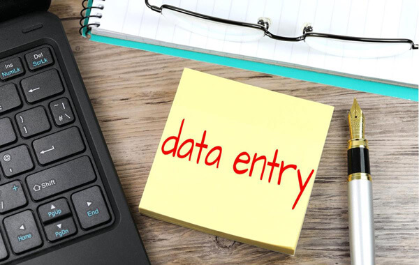 Make Money from Data Entry